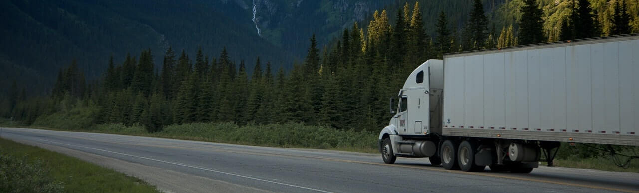 white semi truck in the highway surrounded by forest